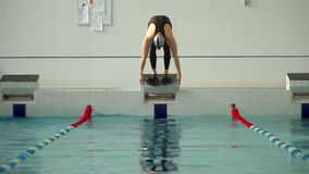 Swimmer in wetsuit dived into the pool. Slow motion stock video