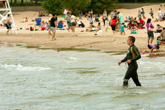 Swimmer In Wetsuit Prepares To Swim Lake Michigan Royalty Free Stock Photo