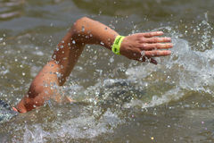 Swimmers. Swimming in a triathlon competition Royalty Free Stock Photography