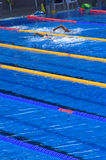 Swimmers in blue pool. Swimmers during training in outdoor bright blue swimming pool water Royalty Free Stock Image