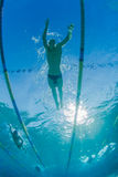 Swimmers Training Underwater. Athletes male and female in swim training Photo underwater looking upwards at athletes in swim stroke stock photography