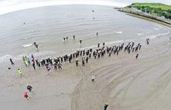 Swimmers in the Dalriada Festival Triathlon in Glenarm Co. Antrim Northern Ireland. Swimmers in the Dalriada Festival Triathlon in Glenarm  Antrim Northern stock image