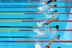 Swimmers dive in start Stock Images