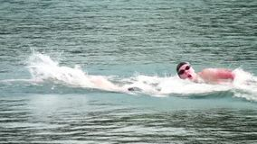 Swimmers. Swimmers dive into the water, swim championship. Sport and power. Water competitions stock footage