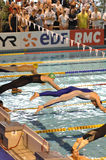 Swimmers diving Royalty Free Stock Images