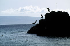 Swimmers Diving from A Rock. Silhouette of swimmers diving off Black Rock, Kaanapali Beach, Maui, Hawaii Stock Image