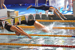 Swimmers diving into swimming pool. Close up of three swimmers at a competition diving into the swimming pool for front crawl race. XVe French Winter Open Stock Photos