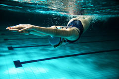 Swimmers Royalty Free Stock Photography