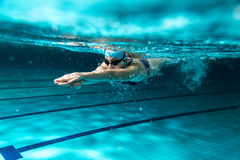 Swimmers. Female swimmer at the swimming pool.Underwater photo Royalty Free Stock Photo