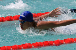 Swimmers Stock Images