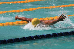 Swimmers Stock Image