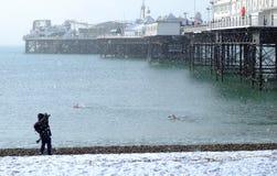 Swimmers In Brighton Beach Snow Stock Photo