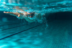 Swimmers Royalty Free Stock Photos
