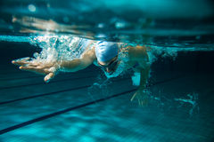Swimmers. Male swimmer at the swimming pool.Underwater photo Royalty Free Stock Images