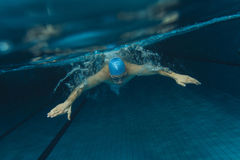 Swimmers. Male swimmer at the swimming pool.Underwater photo Stock Photo