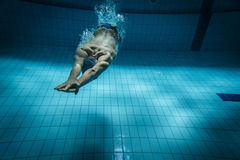 Swimmers Stock Photography