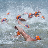 Swimmers in Midmar Mile event Royalty Free Stock Photography