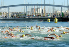 Swimmers on the open waters Royalty Free Stock Photography