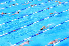 Blue pool with swimmers Royalty Free Stock Photography