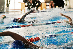 Swimmers in the pool Stock Photos