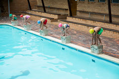 Swimmers preparing to dive off. From starting block at poolside Royalty Free Stock Photography
