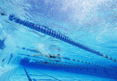 Swimmers racing together in swimming pool Royalty Free Stock Images