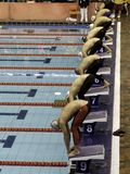 Swimmers ready to compete. Line of male swimmers in competition Stock Photo