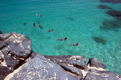Swimmers and sea turtle in the crystal clear waters of Waimea Bay, Oahu, Hawaii. Aerial view of swimmers and sea turtle in the crystal clear waters of Waimea Bay Stock Image