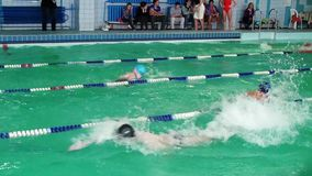 Swimmers. Sport and power. Water competitions. Swimmers dive into the water, swim championship. Sport and power. Water competitions stock footage