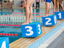 Swimmers on starting block Royalty Free Stock Photo