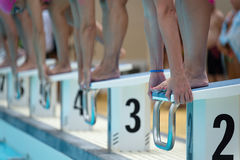 Swimmers on the starting blocks Royalty Free Stock Photo