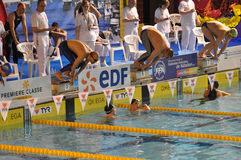Swimmers starting diving into the swimming pool. Swimmers at a competition ready and starting diving into the swimming pool for front crawl race. XVe French Royalty Free Stock Photos
