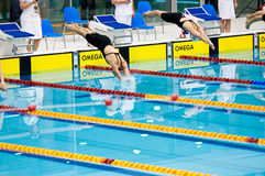Swimmers starting to the competition Stock Photography