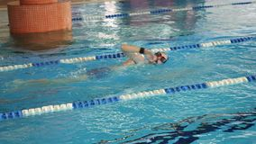 Swimmers swim free style, front crawl or forward crawl stroke in a swimming pool for competition or race. Competition. Swimming in the pool stock video footage