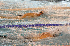 Swimmers swimming front crawl. Close up of two swimmers at a competition swimming crawl stroke. XVe French Winter Open Masters Championship Dunkerque France Stock Photos
