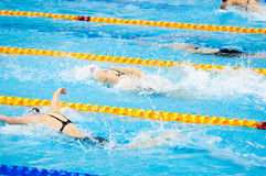 Swimmers swimming in a pool Royalty Free Stock Photos