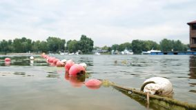Swimmers train on the lake. Safety buoys in the foreground. 4k stock footage