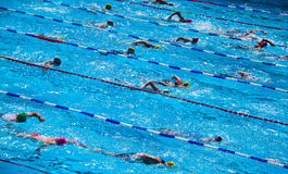 Swimmers during triathlon Stock Image