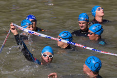 Swimmers waiting for the start. Royalty Free Stock Photos