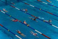 Swimmers Lanes Warm Up Royalty Free Stock Image