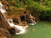 Swimmimg na cachoeira do si de Kouang do tourquise em Laos imagem de stock