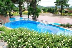 Swimmimg pool Royalty Free Stock Image