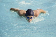 Swimmimg Royalty Free Stock Images