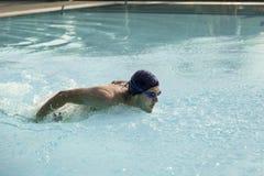 Swimmimg Stock Photos