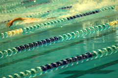 Swimming. Swimmer in the top swimming lane Royalty Free Stock Image