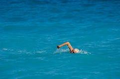Swimming Stock Image