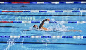 Swimming. Crawl swimmer in a blue water swimming pool Royalty Free Stock Image