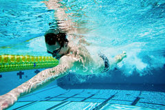 Swimming. Swimmer Under Water in Pool Stock Images