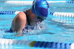 Swimming. Breaststroke in the sun Stock Image