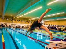 swimming royalty-vrije stock foto's